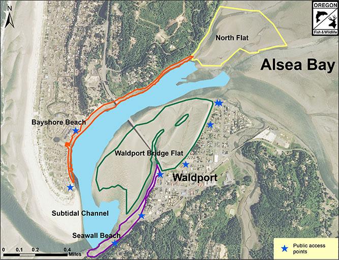 Alsea Oregon Map.Odfw Seacor Findings Alsea Bay