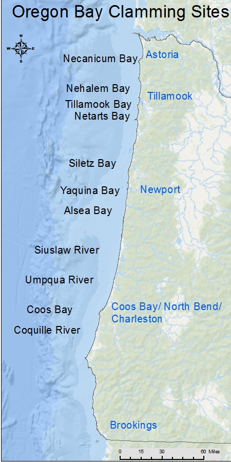Odfw Where To Dig Bay Clams