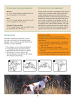 Columbia Basin Bird Hunting Guide