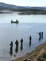 Fishing the Nestucca