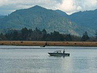 Odfw where and how to fish for Tillamook fishing report