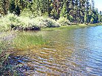 Delintment Lake