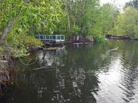 Reinhart Pond