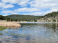 Yellowjacket Lake