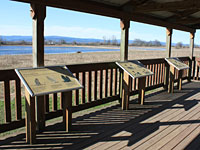 Viewing Platform at Sauvie Island