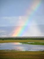 Summer Lake Rainbow