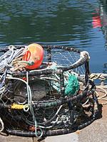 Crab Pots , Newport