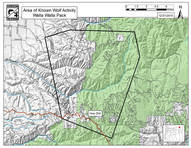 Specific wolves and wolf packs in oregon walla walla pack for Wa fishing license cost