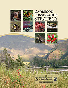 The Oregon Conservation Strategy