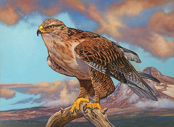 Order Stamps Online >> ODFW Habitat Conservation Stamp