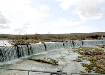Odfw three mile falls fish counts for Dam fish count