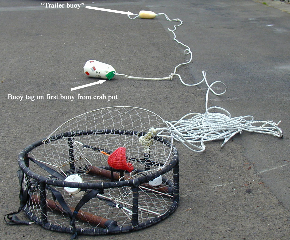 How to make a crab pot float best crab for Crab fishing oregon