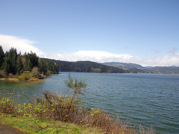 Odfw 2012 news release for Henry hagg lake fishing