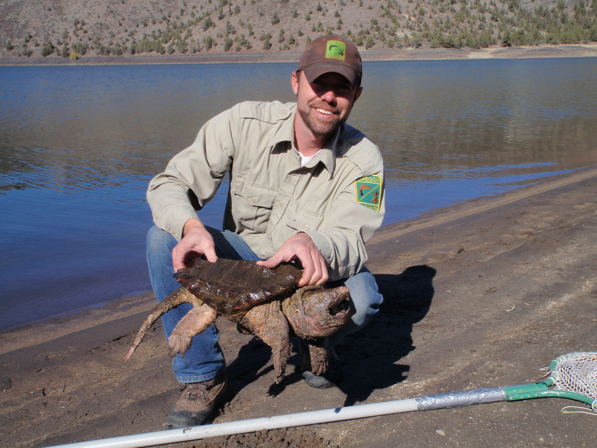 Invasive alligator snapping turtle removed from prineville for Oregon fishing license price