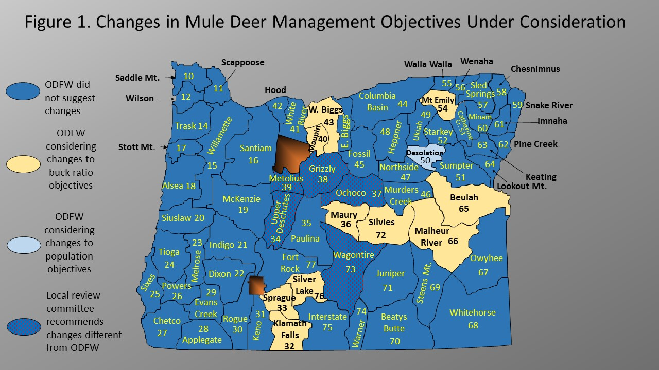 Deer And Elk Management Objectives Under Review