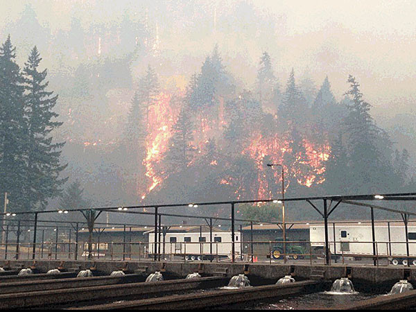 Egle Creek fire from Cascade Hatchery