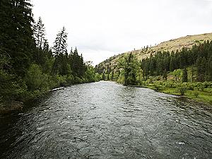 Minam River Wildlife Area