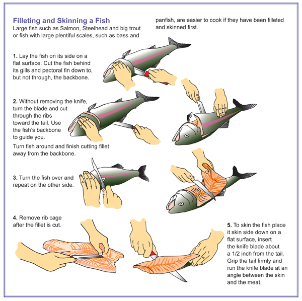 ODFW How to clean and keep your catch