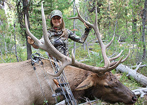 odfw elk hunting in oregon. Black Bedroom Furniture Sets. Home Design Ideas