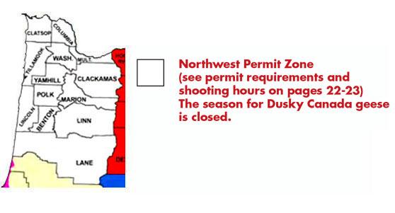 Odfw Goose Permit Test
